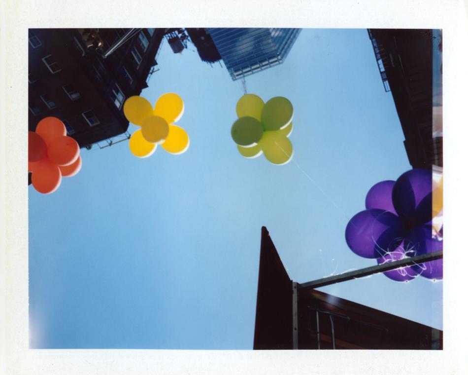 Polaroid Patella WIB Photography Editorial Art